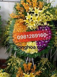 vòngí hoa sài gòn tím vàng